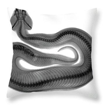 C035/4928 Throw Pillow
