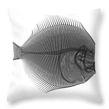 C036/0124 Throw Pillow