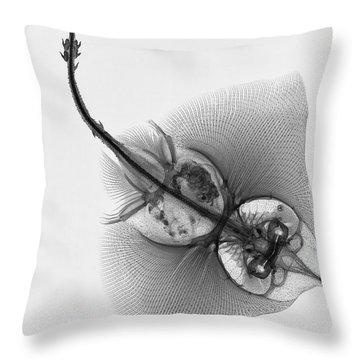 C038/4644 Throw Pillow