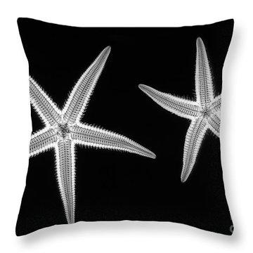 C038/4739 Throw Pillow