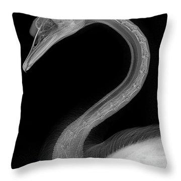 C046/1740 Throw Pillow