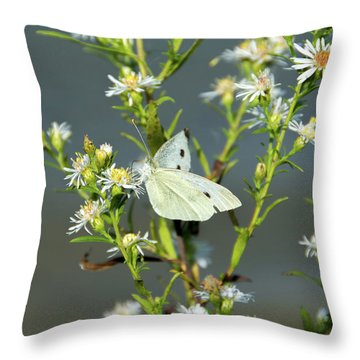 Cabbage White Butterfly On Flowers Throw Pillow