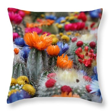 Throw Pillow featuring the photograph Cacti Flowers by Top Wallpapers