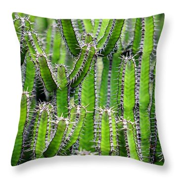 Cacti Wall Throw Pillow