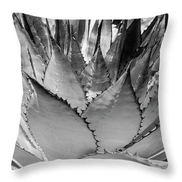 Cactus 3 Throw Pillow