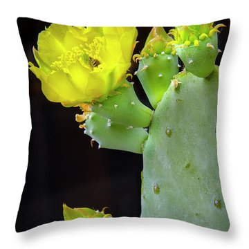Cactus Blooms With Bee II Throw Pillow