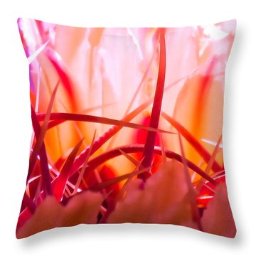 Cactus Cathedral Throw Pillow