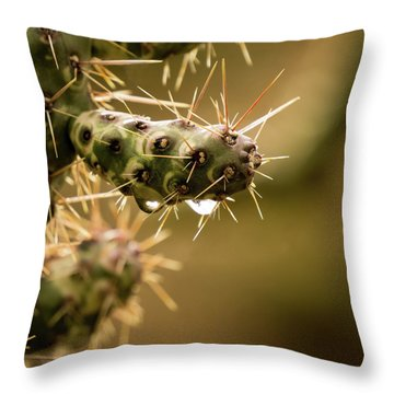 Cactus Detail Throw Pillow