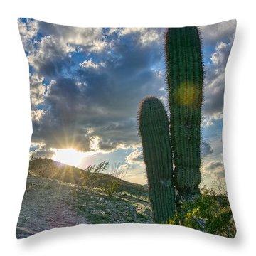 Cactus Portrait  Throw Pillow