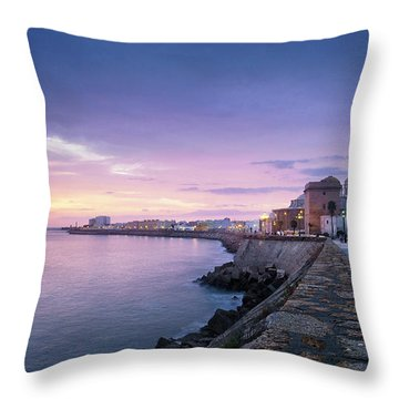 Throw Pillow featuring the photograph Cadiz Skyline And Cathedral by Pablo Avanzini