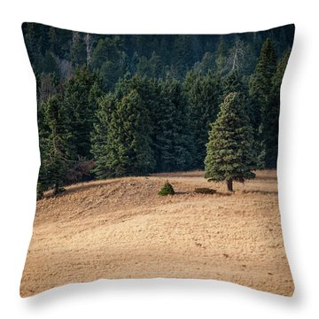 Throw Pillow featuring the photograph Caldera Edge by Jeff Phillippi