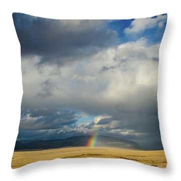 Caldera Rainbow Throw Pillow