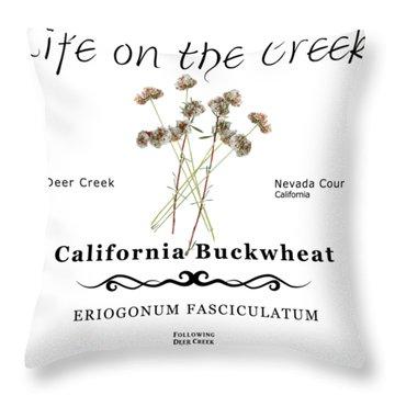 California Buckwheat Throw Pillow