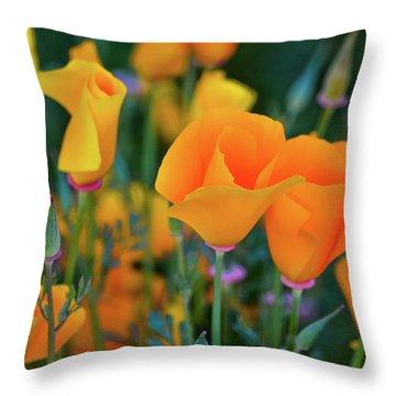 California Poppies Lake Elsinore Throw Pillow