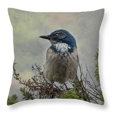 Throw Pillow featuring the photograph California Scrub Jay - Vertical by Patti Deters