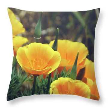Californian Poppies In The Patagonia Throw Pillow