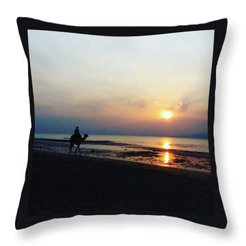 Camel Walking Along The Shoreline At Sunset In Egypt Throw Pillow