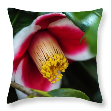 Camellia Bloom And Leaves Throw Pillow