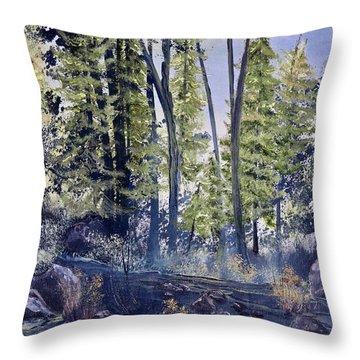 Camp Trail Throw Pillow