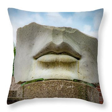 Throw Pillow featuring the photograph Can You Hear Me by Lora J Wilson