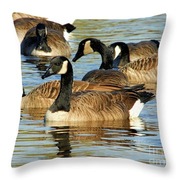 Throw Pillow featuring the photograph Canada Geese by Debbie Stahre