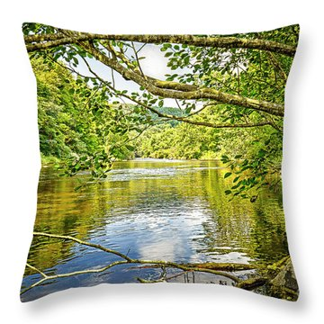 Canal Pool Throw Pillow