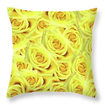 Candlelight Roses Throw Pillow