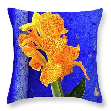 Canna Azure Throw Pillow