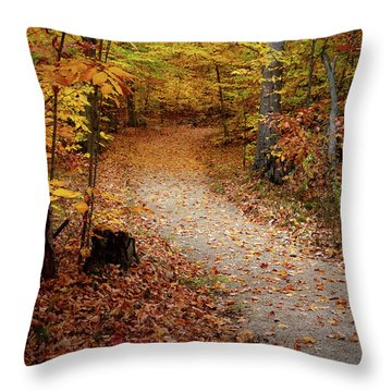 Canopy Of Color Throw Pillow