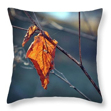Throw Pillow featuring the photograph Captured In Light by Michelle Wermuth