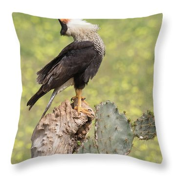 Caracara Head Throw Throw Pillow