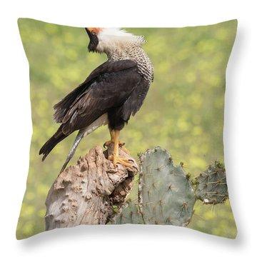 Caracara Head Throw Throw Pillow