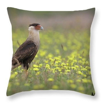Caracara In Spring Throw Pillow