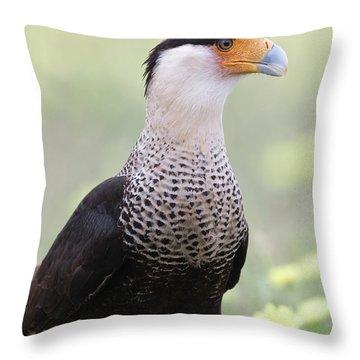 Caracara Profile Throw Pillow