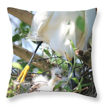Careful Egret Mom With Chicks Throw Pillow