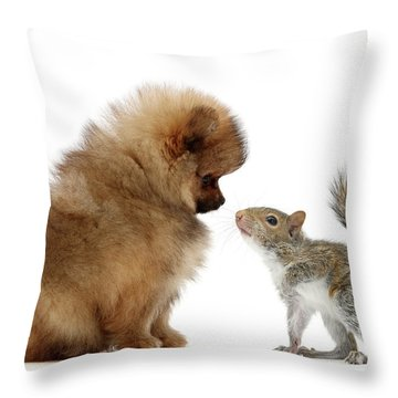 Careful I May Contain Nuts Throw Pillow