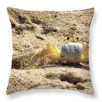 Throw Pillow featuring the photograph Carl The Crab by Lora J Wilson