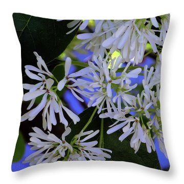Carly's Tree - The Delicate Grow Strong Throw Pillow