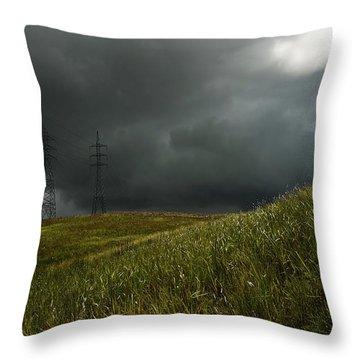 Caroni Grasslands Throw Pillow