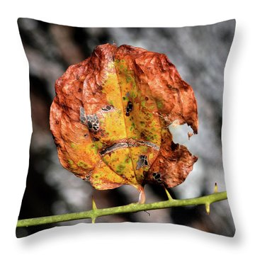 Throw Pillow featuring the photograph Carved Pumpkin Leaf At Gordon's Pond by Bill Swartwout Fine Art Photography