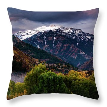 Throw Pillow featuring the photograph Cascade Mountain by TL Mair