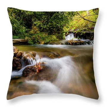 Throw Pillow featuring the photograph Cascades On The Provo Deer Creek by TL Mair