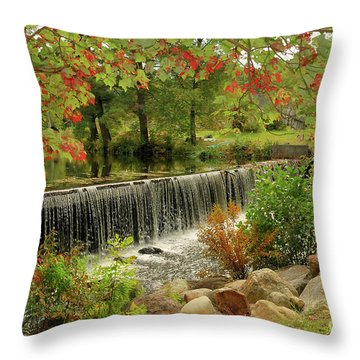 Throw Pillow featuring the photograph Cass Dam by Debbie Stahre