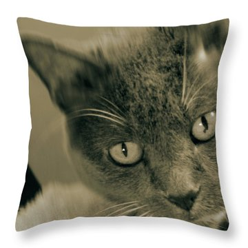 Cat Boticas Portrait 9 Throw Pillow