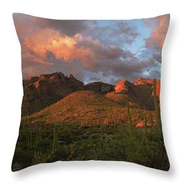Catalina Mountains, Arizona Throw Pillow
