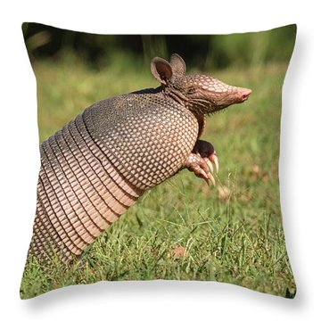 Catching A Scent Throw Pillow