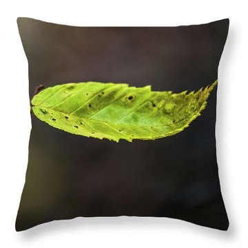 Throw Pillow featuring the photograph Catching Raindrops  by Michael Arend