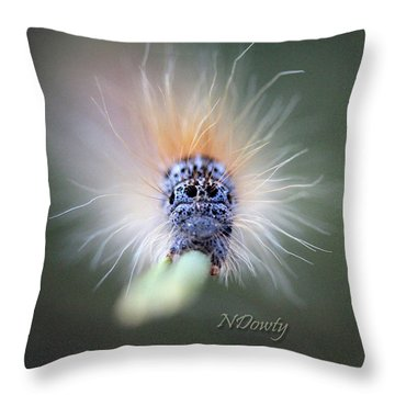 Caterpillar Face Throw Pillow