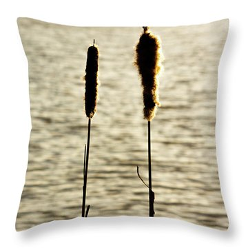 Cattails In The Sun Throw Pillow
