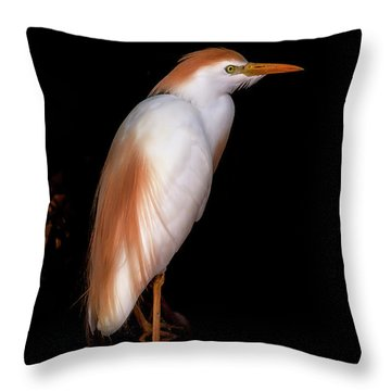 Cattle Egret Throw Pillow
